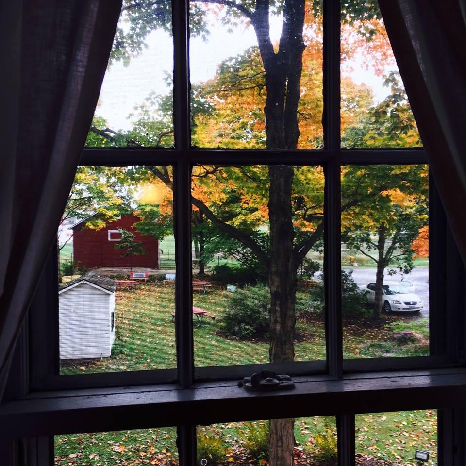window of office